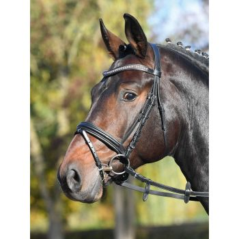 Busse Trense FAMOUS, schwarz/Strass-copper